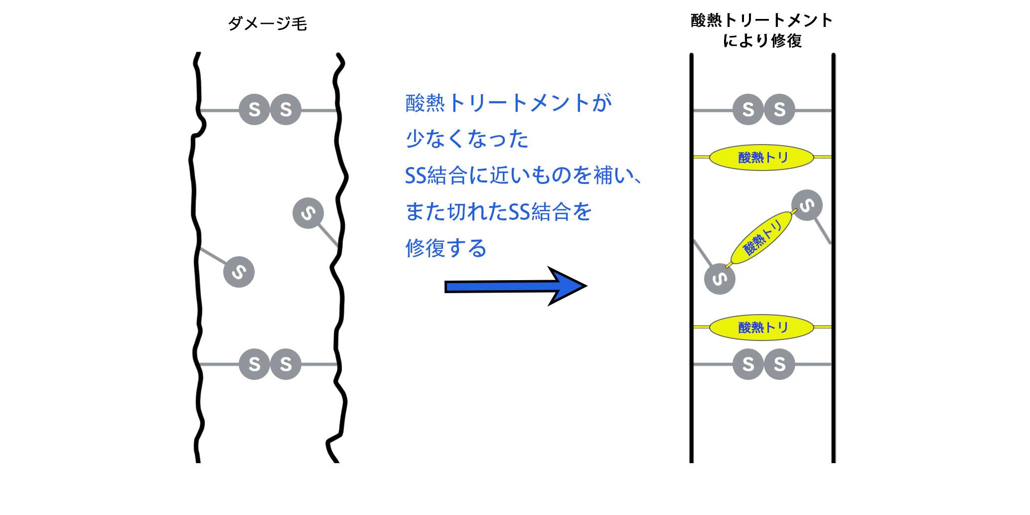 酸熱トリートメントのダメージ補修の仕組み図