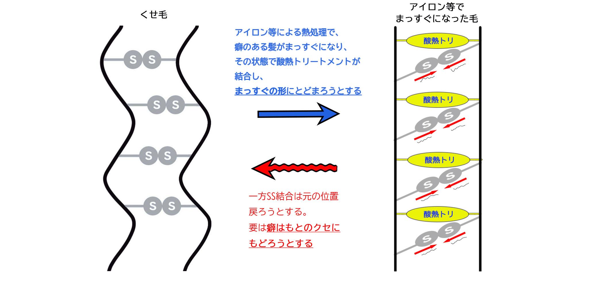 酸熱トリートメントのクセの改善の仕組み